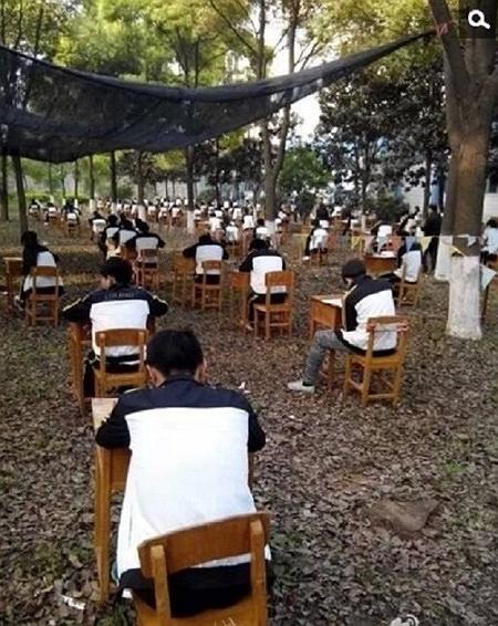 Đưa học sinh vào rừng thi giữa kỳ để tránh quay cóp