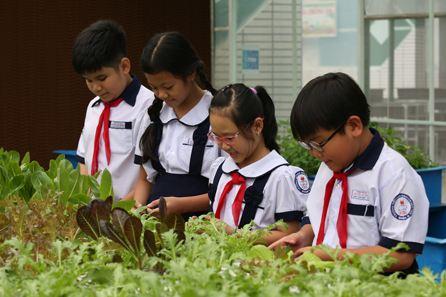 Sinh viên sư phạm TP HCM phàn nàn vì bị bắt theo sách giáo viên